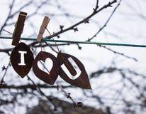 烘干关于爱的叶子题字 晒衣夹附有绳索离开 免版税库存照片