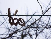 烘干关于爱的叶子题字 免版税库存图片