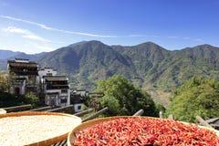 烘干农产品的村民在huangling的山,多孔黏土rgb下 免版税库存照片