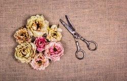 烘干凋枯的玫瑰和老生锈的剪刀在自然亚麻制背景 免版税库存照片