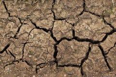 烘干土壤 免版税图库摄影
