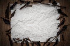 烘干在一张老纸的叶子 免版税库存照片