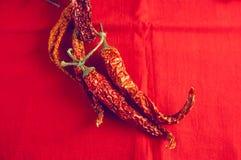 烘干在明亮的红色织品背景的辣椒和莓果荚莲属的植物 免版税库存图片