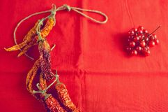 烘干在明亮的红色织品背景的辣椒和莓果荚莲属的植物 库存图片
