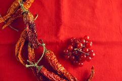 烘干在明亮的红色织品背景的辣椒和莓果荚莲属的植物 免版税图库摄影