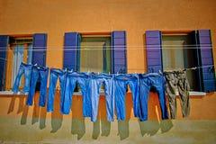 烘干在晒衣绳的牛仔裤 免版税库存图片