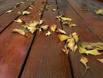 烘干在木地板上的叶子 免版税库存图片