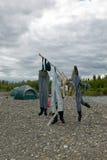 烘干在河岸的三个对趟水者 免版税库存图片