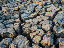 烘干并且崩裂土壤背景 免版税图库摄影