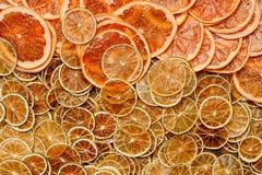 烘干柑橘喜欢桔子、石灰和葡萄柚 免版税图库摄影