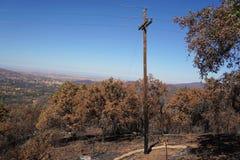 烘干森林野火烧焦和摧残的被烧的加利福尼亚山坡 库存图片