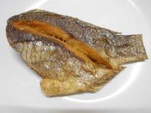 烘干油煎的鱼 库存照片