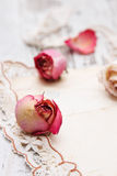 烘干玫瑰色和老信函 库存照片