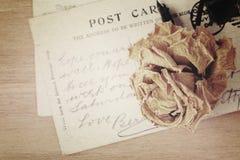 烘干玫瑰色和老明信片 柔光葡萄酒样式 图库摄影