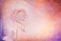 烘干玫瑰色和老明信片 透镜火光和bokeh作用,葡萄酒 库存图片