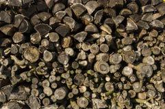 烘干的木堆整洁地被堆积的木柴和小木头为 图库摄影