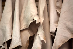 烘干的皮肤在阿拉伯市场的胡同 免版税库存照片