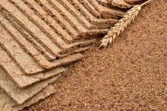 烘干饮食酥脆面包,与新鲜的耳朵whea的缺一不可的小麦面粉 免版税图库摄影