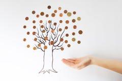 烘干贪污来的钱结构树 免版税库存照片