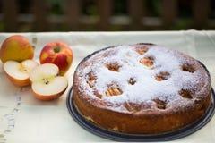 烘烤与苹果iin秋天的苹果饼 库存照片