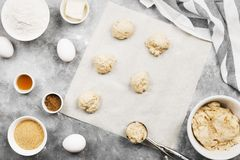 烘烤的曲奇饼-面粉,鸡蛋,香料,香草成份 免版税库存图片