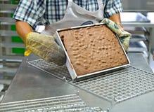 烘烤蛋糕 免版税库存图片