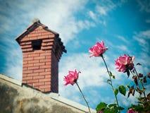 烟囱和野生玫瑰 免版税库存图片