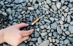 烟头 库存照片