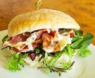 烟肉沙拉汉堡 库存图片