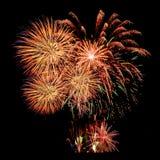 烟花庆祝和夜空背景 免版税库存图片