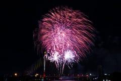 烟花新年庆祝-美丽的五颜六色的烟花isol 免版税库存图片