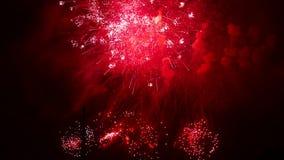 烟花红色闪光  在夜空的五颜六色的烟花 许多闪光 股票视频