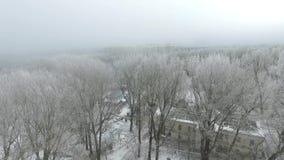 烟雾在城市在冬天 影视素材