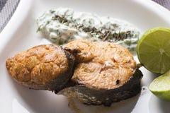 烤三文鱼柠檬和沙拉 库存照片