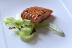烤三文鱼用黄瓜 库存照片