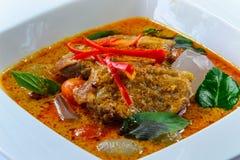 烤与红色咖喱和果冻棕榈的鸭子 免版税库存图片