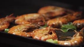 烤和在电烤肉的油煎的虾 在bbq的健康烤海鲜 烤红色虾特写镜头  股票视频