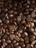 烤咖啡豆在泰国 免版税库存照片