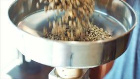 烤咖啡豆的专业咖啡机器 咖啡未加工的豆涌入漏斗做一份真正的咖啡 影视素材
