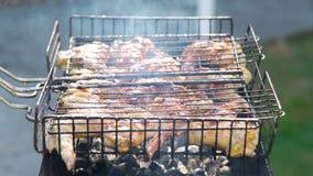 烤在烤肉格栅的鸡肉 股票录像
