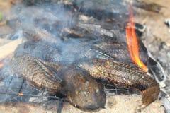 烤在烤肉的鱼 免版税库存图片