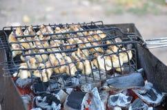 烤在煤炭的蘑菇 图库摄影
