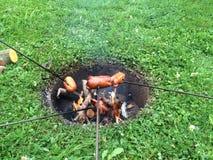 烤在自然的香肠 库存图片