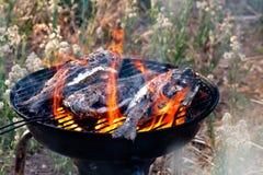 烤在BBQ的海鲷鱼 免版税图库摄影
