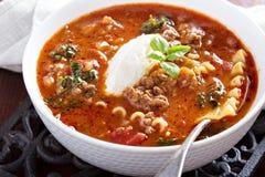 烤宽面条汤用绞细牛肉 库存图片