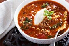 烤宽面条汤用绞细牛肉 图库摄影