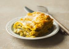 烤宽面条用在棕色backgroun的南瓜、菠菜和火鸡肉 图库摄影