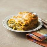 烤宽面条用在棕色backgroun的南瓜、菠菜和火鸡肉 免版税库存图片