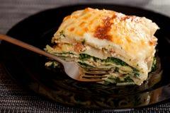 烤宽面条用菠菜和三文鱼 免版税库存照片