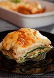 烤宽面条用菠菜和三文鱼 免版税图库摄影